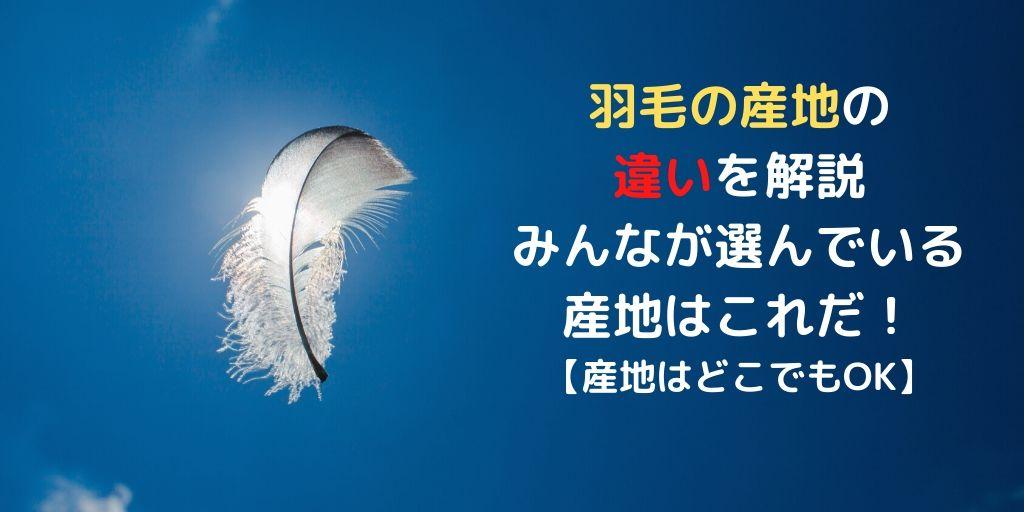羽毛の産地の違いのアイキャッチ